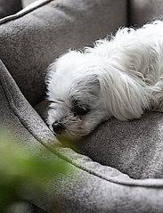Denjo Dogs - Nest Bed Gusto - hundesenge - sand - 7