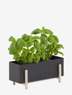 Botanic Herb Box - ruukut - black/ash