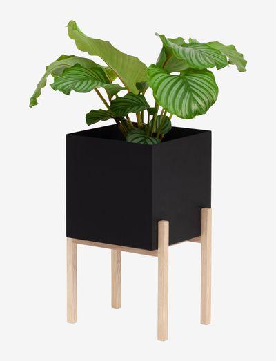 Botanic Pedestal - blomsterpotter & krukker - black/ash