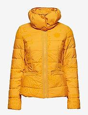 Desigual - PADDED SUNNA - padded jackets - banana - 2