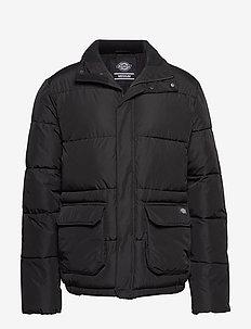 OLATON - padded jackets - black