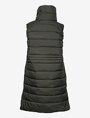 Didriksons - MY WNS VEST - puffer vests - forest green - 3