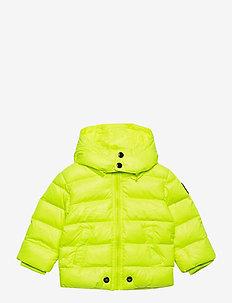 JIANB JACKET - veste rembourrée - bright yellow