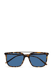 MEN'S SUNGLASSES - BLUE HAVANA