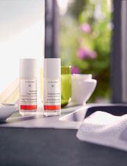 Dr. Hauschka - Sage Mint Deodorant - deo roll-on - clear - 2
