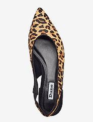 Dune London - CELENE - ballerines - leopard-leather - 3