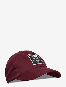 CAP ECOALF PATCH MAN - petten - aubergine