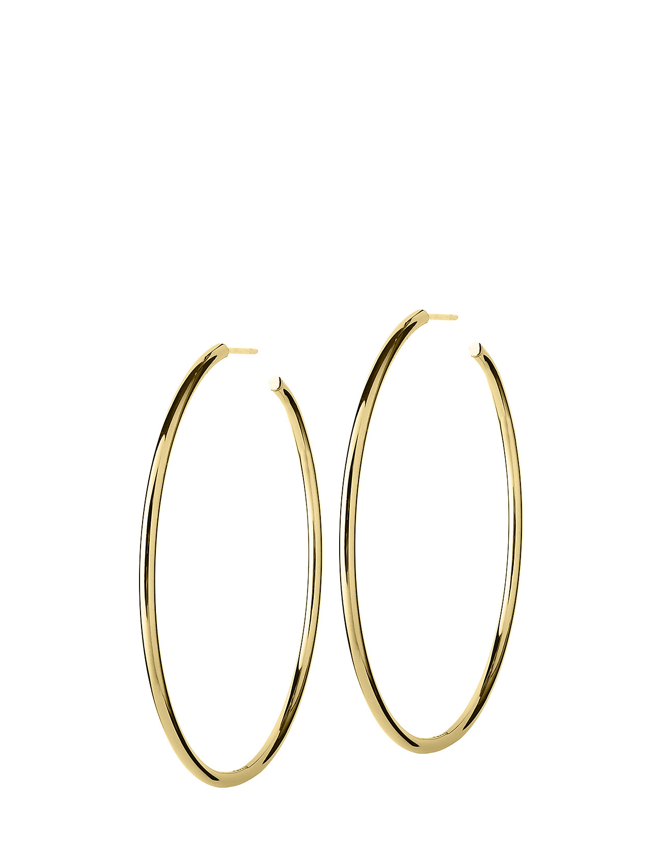 Hoops Earrings Gold Large