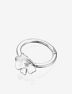 Violet Ring - ringer - silver