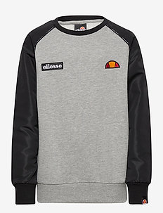 EL ZAPHA JNR SWEATSHIRT - basic sweatshirts - grey marl