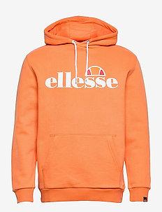 EL SL GOTTERO OH HOODY - hoodies - orange