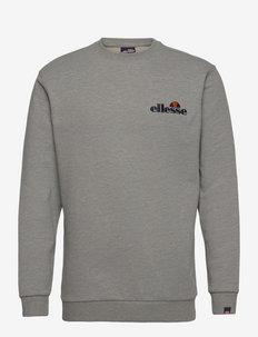 EL FIERRO SWEATSHIRT - swetry - grey marl