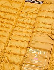 Esprit Casual - Jackets outdoor woven - doudounes - brass yellow - 5