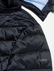 Esprit Casual - Jackets outdoor woven - doudounes - navy - 4