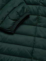 Esprit Casual - Jackets outdoor woven - donsjassen - dark green - 5