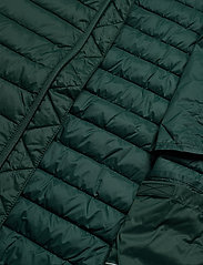 Esprit Casual - Jackets outdoor woven - donsjassen - dark green - 6