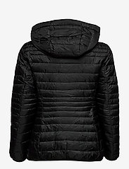 Esprit Casual - Jackets outdoor woven - doudounes - black - 2