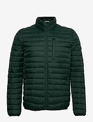 Esprit Casual - Jackets outdoor woven - donsjassen - dark green - 1