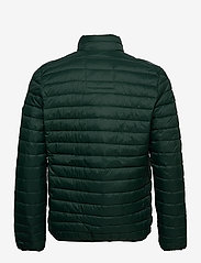 Esprit Casual - Jackets outdoor woven - donsjassen - dark green - 2