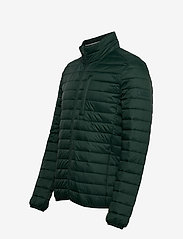 Esprit Casual - Jackets outdoor woven - donsjassen - dark green - 3