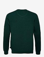 Esprit Casual - Sweaters - tricots basiques - bottle green 5 - 1