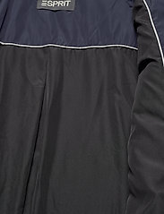 Esprit Collection - Coats woven - manteaux d'hiver - navy - 8