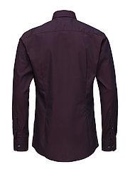Red Button-Under Poplin Shirt - PINK/RED