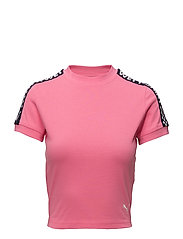 SS CROPPED TEE - KNOCKOUT PINK