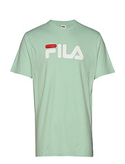 UNISEX CLASSIC PURE ss tee - MIST GREEN