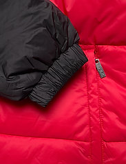 FILA - SCOOTER puffer jacket - veste sport - black-true red - 4