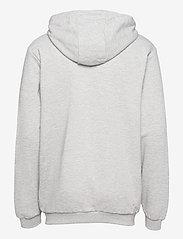 FILA - MEN SASHA hooded jacket - pulls a capuche - light grey melange bros - 1