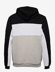 FILA - MEN ANALU blocked hoody - pulls a capuche - light grey melange bros-black-bright white - 1