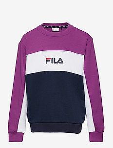 TEENS GIRLS OLENA blocked crew - sweatshirts - black iris-sparkling grape-bright white