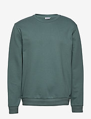 Filippa K - M. Isaac Sweatshirt - basic sweatshirts - mint powde - 0