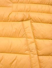 Fransa - FRPAPADDING 2 Outerwear - puffer vests - ochre - 4