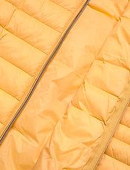 Fransa - FRPAPADDING 2 Outerwear - puffer vests - ochre - 5