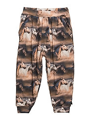 Horse photo pants - INK