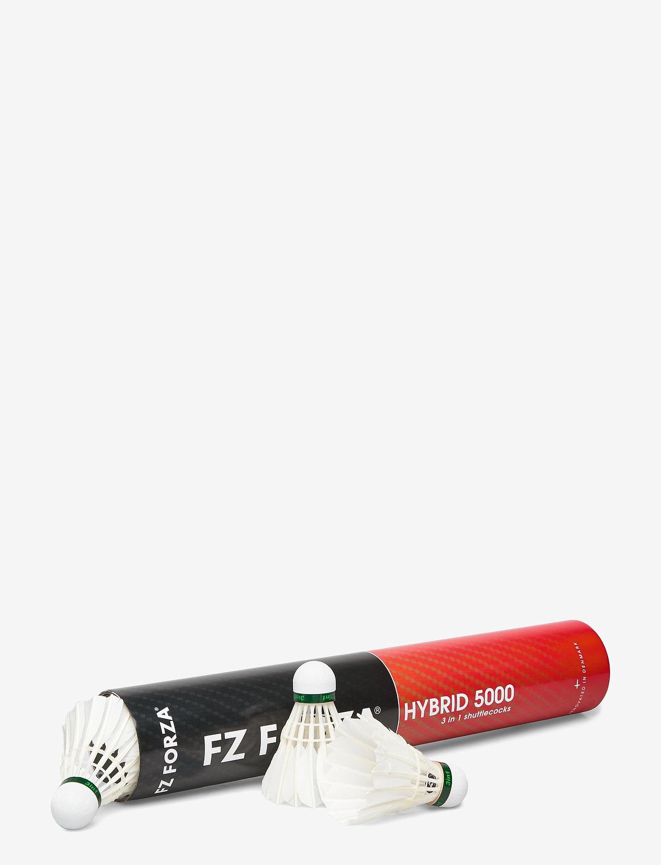 FZ Forza - FZ FORZA Hybrid 5000 - ballen en accessoires - 01 - 1