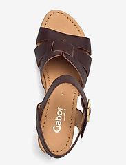 Gabor - Ankle-stap sandal - espadrilles mit absatz - brown - 3
