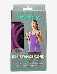 Gaiam - Resistance Cord & Door Attachment Kit Light - kotitreenivälineet - purple - 1