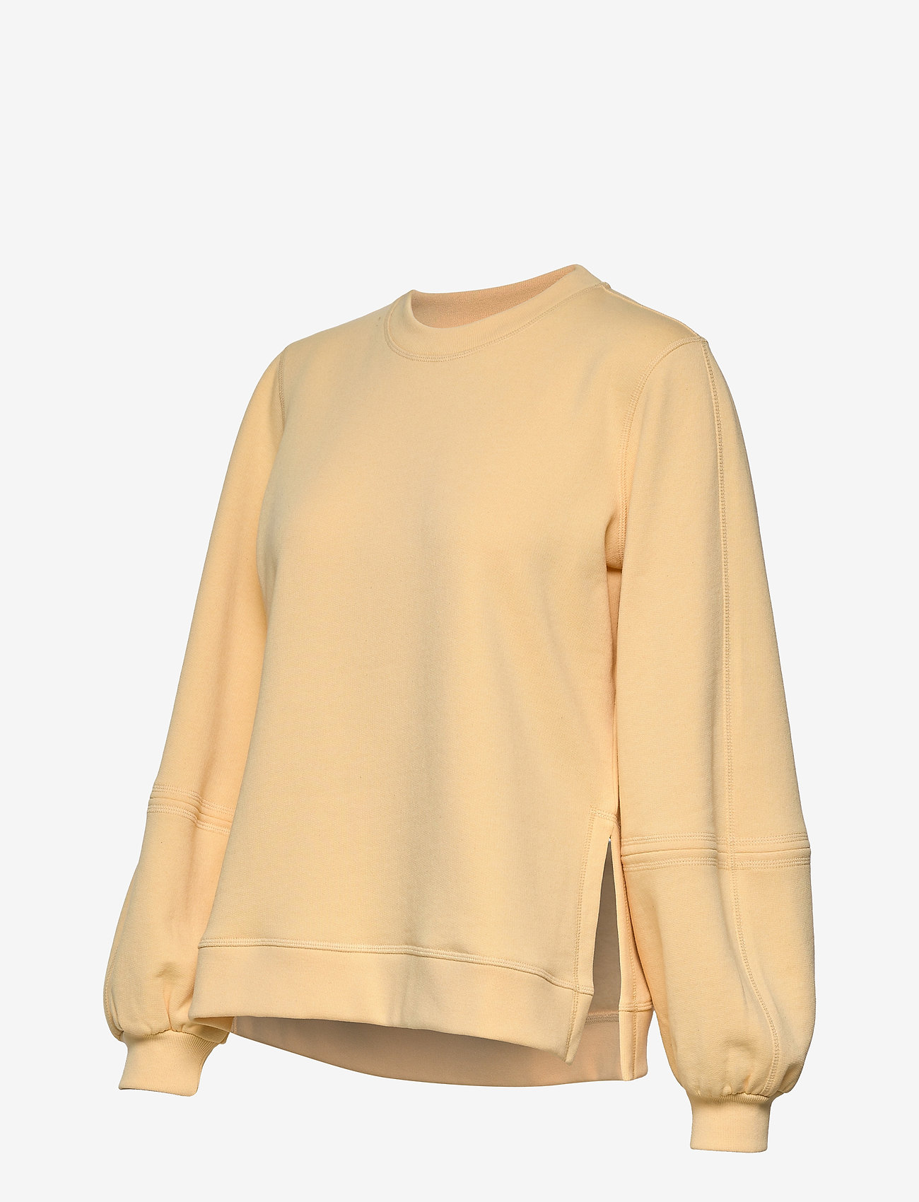Ganni - Software Isoli - sweatshirts & hættetrøjer - anise flower - 2