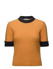 Evangelista - Turmeric Orange