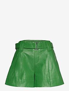 Shorts - skinn shorts - kelly green