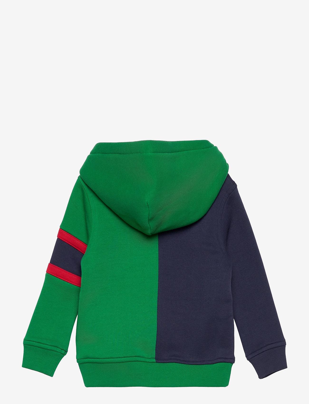 GANT - D2. TIGER HOODIE - hoodies - lavish green - 1