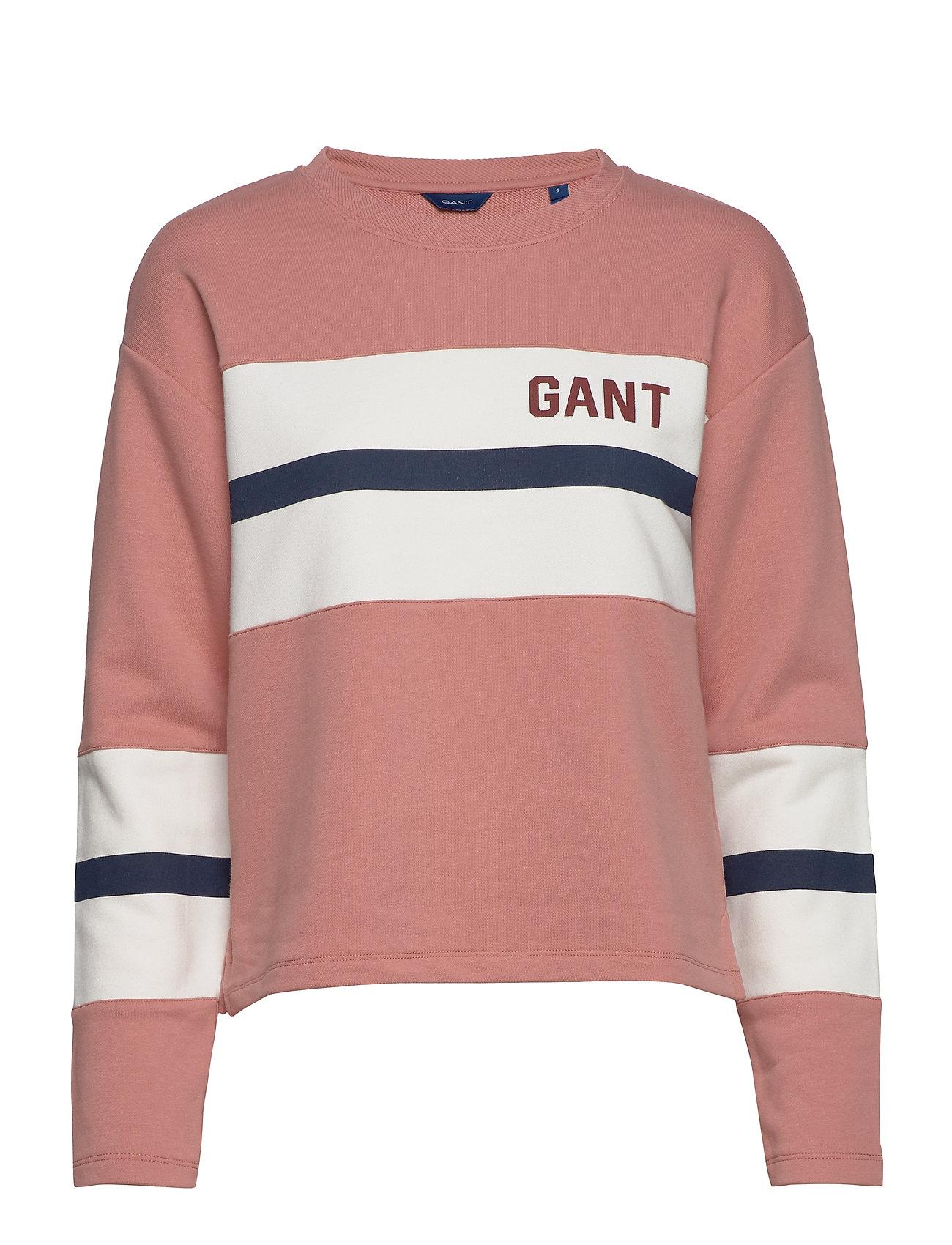 Gant D1.GRAPHIC BLOCK STRIPE C-NECK - ASH ROSE