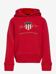 ARCHIVE SHIELD HOODIE - EQUESTRIAN RED