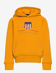 ARCHIVE SHIELD HOODIE - IVY GOLD