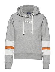 D1. GRAPHIC BLOCK STRIPE HOODIE - LIGHT GREY MELANGE