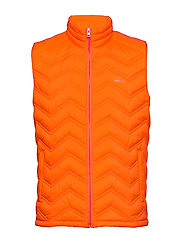 D1. THE LIGHT DOWN GILET