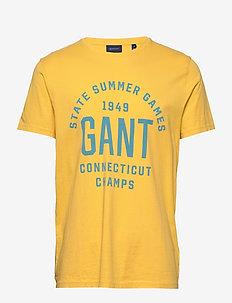 D2. SUMMER GRAPHIC SS T-SHIRT - logo t-shirts - mimosa yellow
